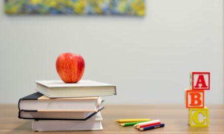Edukacja w gminie Długołęka potrzebuje planu i wizji [WYWIAD]
